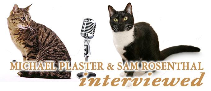 Box-InterviewCats