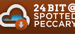 Box-SP24bit
