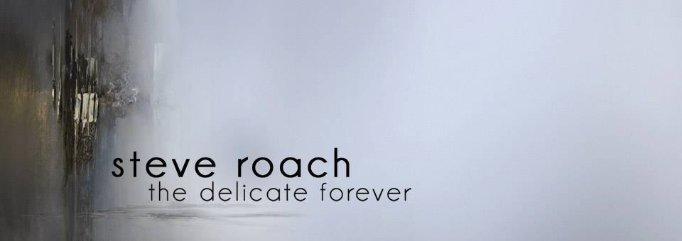 Steve Roach: The Delicate Forever