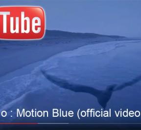 ErikWollo-MotionBlue
